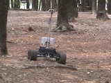 jBot in the woods